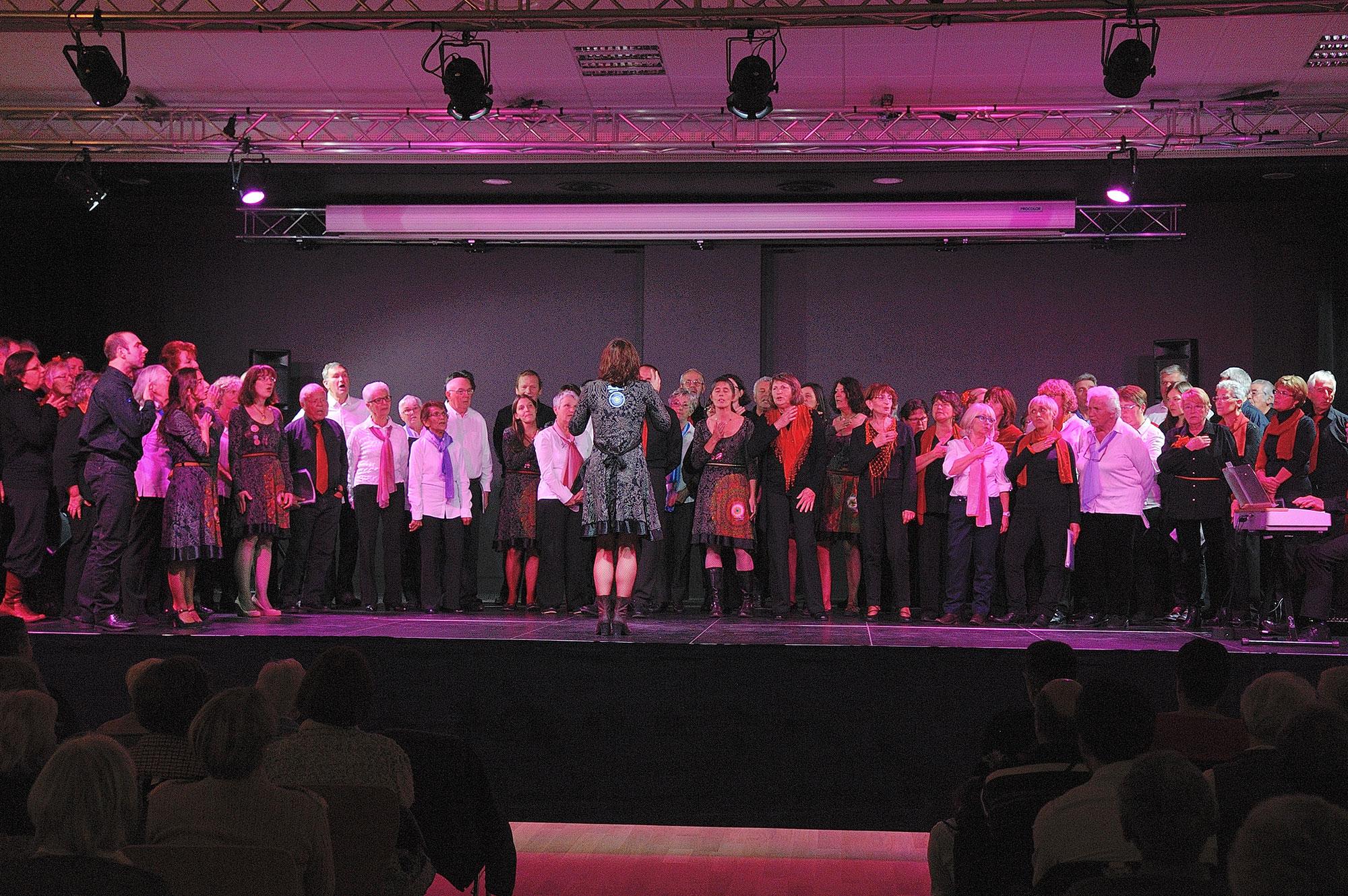 Concert au profit de Clinatec - 15 novembre 2014
